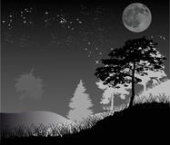 Trees under star night sky Royalty Free Stock Images