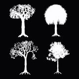 TREES VECTOR Stock Photography