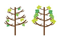 Trees vector Royalty Free Stock Image
