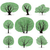 Trees vector Royalty Free Stock Images