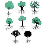 Trees vector collection Royalty Free Stock Image
