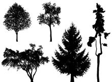Trees - vector set Royalty Free Stock Images
