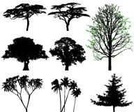 Trees - vector set Stock Photo