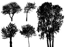 Trees - vector set Royalty Free Stock Photo