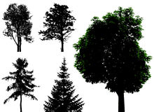 Trees - vector set Stock Photography