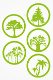 Trees - vector set Royalty Free Stock Image