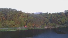 Trees and vegetation on mountain lake shore. Drone aerial. Sampaloc Lake, San Pablo City, Laguna, Philippines - February 20, 2018: Trees and vegetation on stock video footage