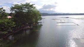 Trees and vegetation on mountain lake shore. Drone aerial. Sampaloc Lake, San Pablo City, Laguna, Philippines - November 21, 2017: Trees and vegetation on stock video footage