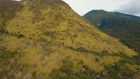 Trees and vegetation on the mountainside. Camiguin island Philippines. Rainforest covered with green vegetation and trees in the mountains on the tropical stock footage