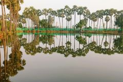 River reflection Royalty Free Stock Images