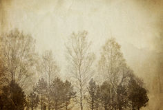 Trees on vintage paper sheet. Royalty Free Stock Photo
