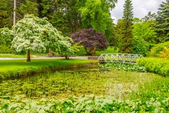 Trees, walk way and lake in Botanic Garden. Dublin, Ireland royalty free stock photography