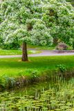 Trees, walk way and lake in Botanic Garden. Dublin, Ireland stock image
