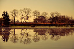 Trees by the Water Royalty Free Stock Photography
