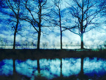 Artwork of trees and water Royalty Free Stock Image