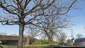 Trees. On the way to Lincoln park zoo in chicago Illinois Stock Photo