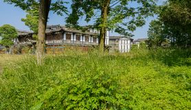 Trees in weeds before tile-roofed buildings on sunny summer day, Royalty Free Stock Photos
