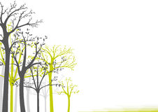 Trees On White Background Royalty Free Stock Images