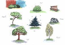 Trees on white background. Illustration of four trees with different colors on a white background Stock Image