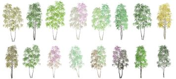 16 trees on a white background stock illustration