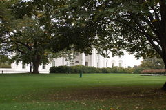 Trees on the White House Lawn. American Elm, Beech, Maple, Oak, and Magnolia trees grow on the famous North Lawn of the white House in Washington, DC stock image