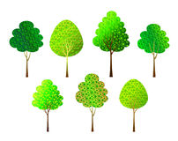 Trees  on white Stock Images