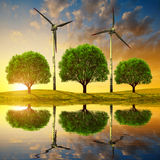 Trees with wind turbines on meadow Royalty Free Stock Images