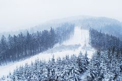 Trees in Winter. Trees covered with snow and fog in winter. This landscape is situated in the East Moravia, the Czech Republic. The picture is taken from the royalty free stock photos