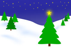 Trees in winter. Winter scene of evergreen trees in snow on starry night stock illustration