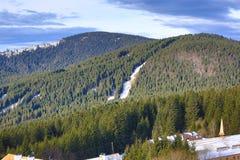 Trees, Winter landscape in the ski resort of Špičák,  Železná Ruda, Czech Republic. A Picture of the Winter landscape in the ski resort of Špičák, Žezn Royalty Free Stock Images