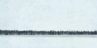 Trees in winter. / minimalist painting / illustration painting Stock Image