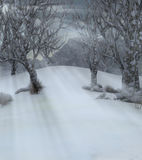 Trees in wintry landscape. Realistic 3d illustration of trees in snowy winter landscape Royalty Free Stock Photo