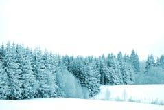 Free Trees With Snow Stock Photos - 1895783