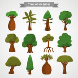 Trees of the world color icons set for web and mobile design Stock Photography