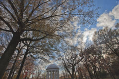 In the Trees--World War I Memorial in Washington, D.C. Royalty Free Stock Photos