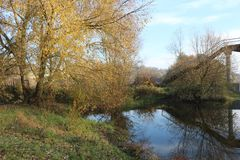 Trees with yellow foliage adorn the banks of the river in autumn. Beautiful season stock photos