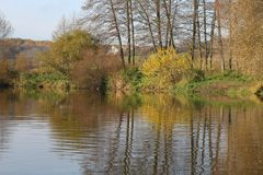 Trees with yellow foliage adorn the banks of the river in autumn. Beautiful season stock photo