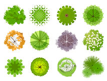 Trees for your own landscape. Trees - top view. Easy to use in your landscape design projects Royalty Free Stock Photos