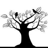Treesilhouette Fotografering för Bildbyråer