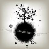 Treesilhouette Arkivfoto