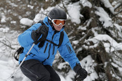 Treeskiing Stock Photography