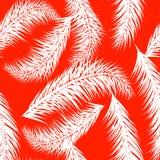 Treeson blanco de la palma del vector el fondo coralino Modelo incons?til drenado mano La palmera tropical del verano se va incon imagenes de archivo