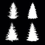 treesvektor Fotografering för Bildbyråer