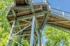 Treetop ścieżka przez mieszanego lasu przy północną krawędzią Harz, widok drewniane deski i poparcia spod spodu zdjęcia royalty free