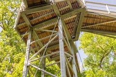 Treetop ścieżka przez mieszanego lasu przy północną krawędzią Harz, widok drewniane deski i poparcia spod spodu obraz stock