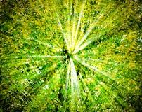 Treetop Stock Image