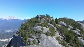 Treetop Mountain Royalty Free Stock Image