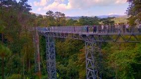 Treetop przejście w Chiangmai, Tajlandia Obraz Royalty Free
