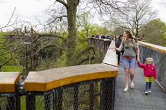 Treetop Walkway Kew Gardens Royalty Free Stock Images