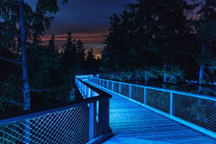 Treetop Walkway lignting, Sightseeing trail in tree crowns. Wood. Color-lit Treetop Walkway in night Sightseeing trail in tree crowns. Wooden construction with a Stock Images